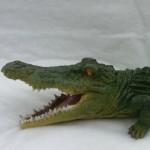 крокодил цветной1