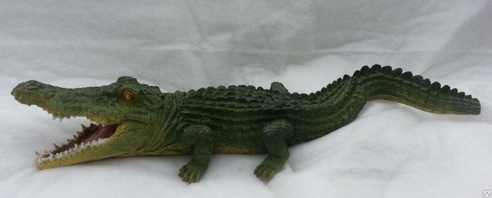 крокодил цветной